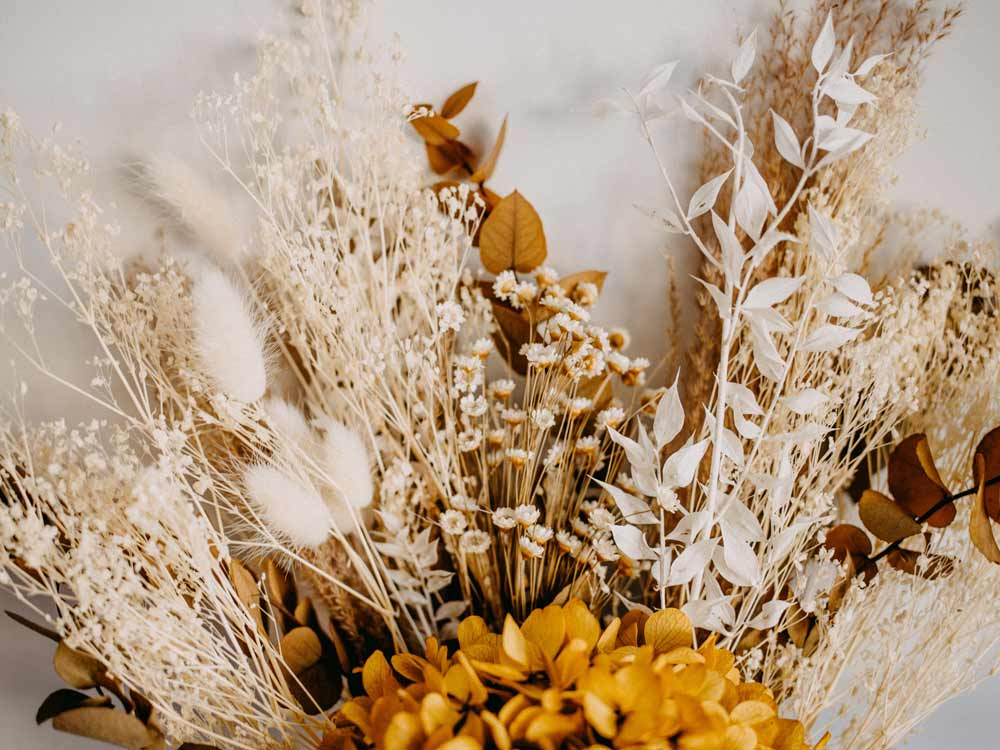 A Dried Flowers